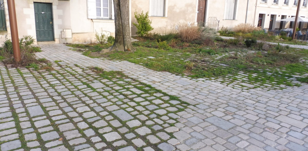 """Réaménagement et embellissement piétonnier du """"Chemin du Bout du Monde"""" - Calminia"""