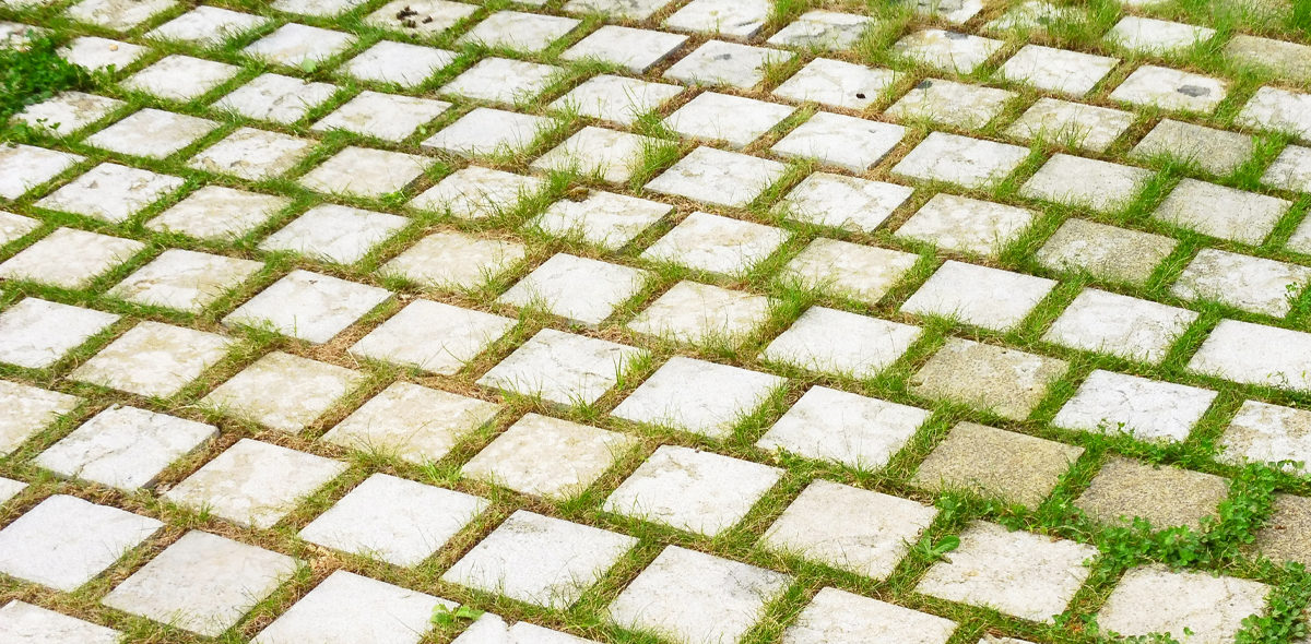 lusignan zoom sur les pavés engazonnés CALMINIA